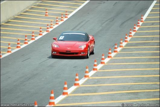 driverbrocchi025.jpg