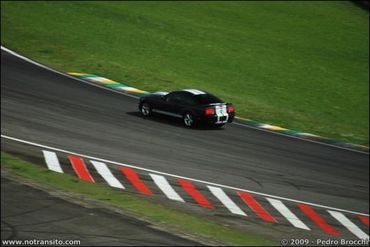 driverbrocchi030.jpg